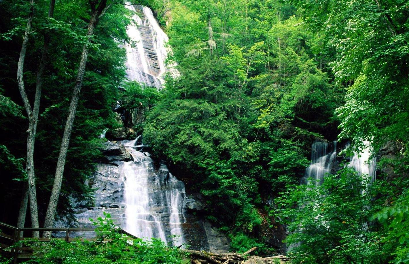 Chattahoochee Oconee National Forests